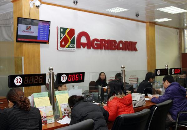 Vay tín chấp Agribank